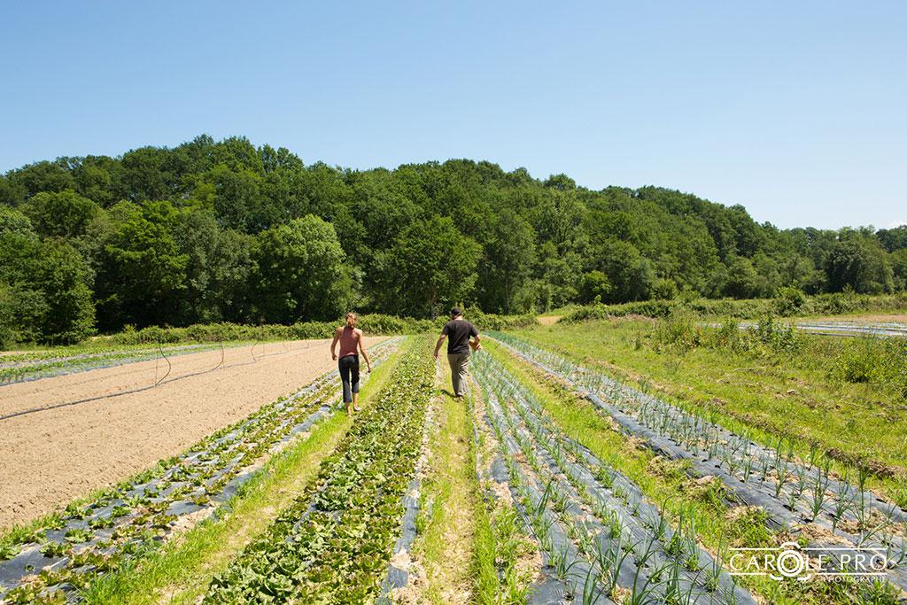 espace_test_agricole