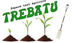 Trebatu_logo